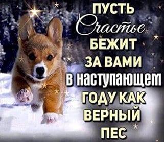 С Новым годом и Рождеством!