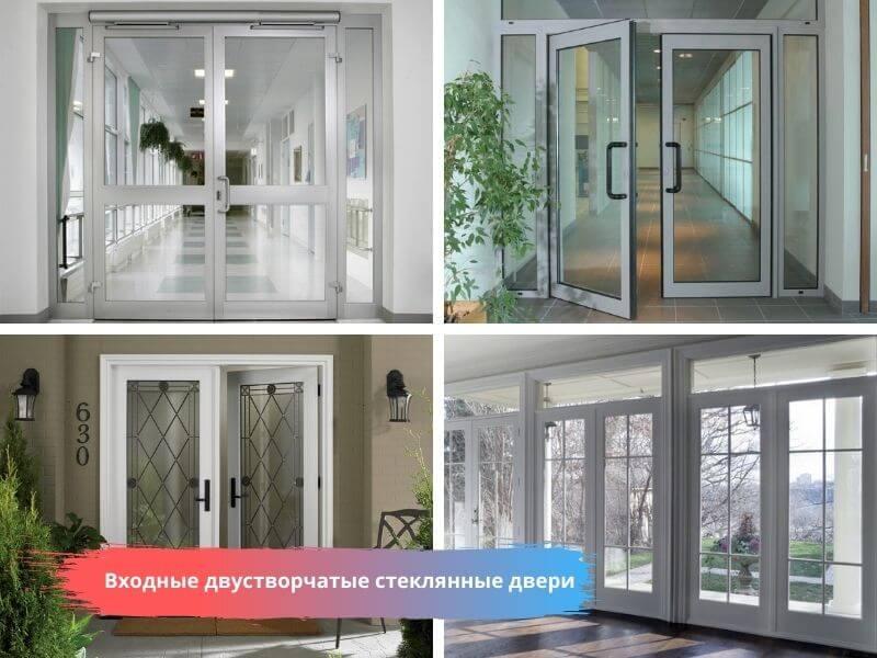 Входные двустворчатые стеклянные двери на заказ в Москве